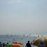 アルビノ 夏の海へ行く